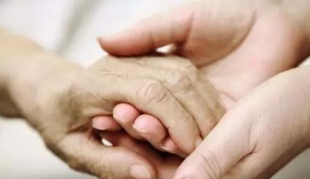 婆婆的这双手是腊月最美的手